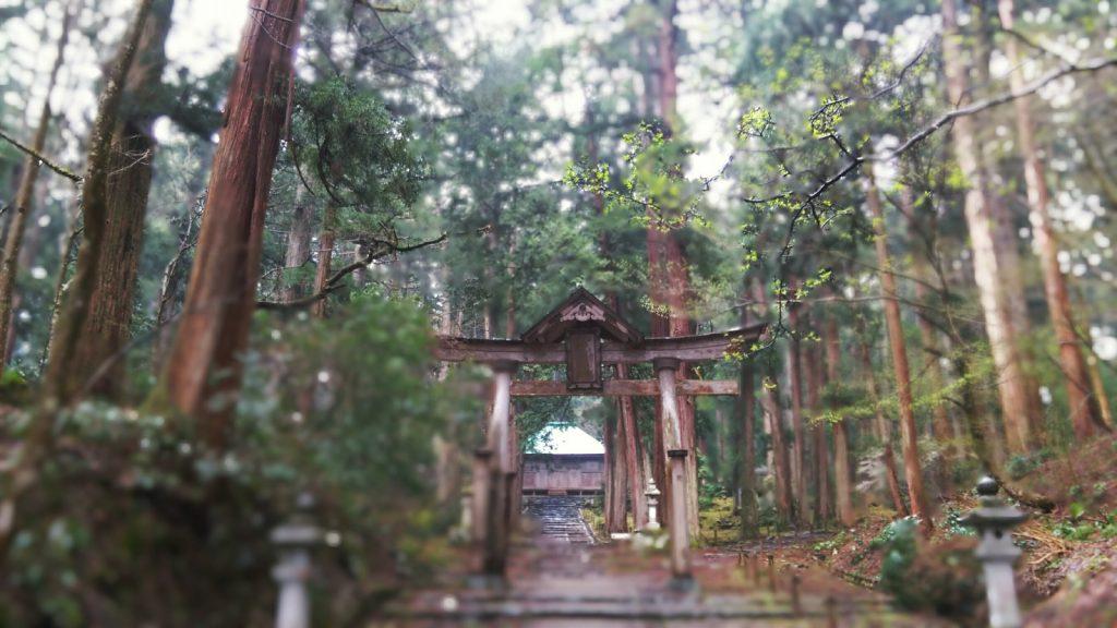 平泉寺白山神社 二の鳥居